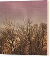Enchanted Forest 9 Wood Print