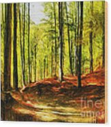 Enchanted Forest - Drawing  Wood Print
