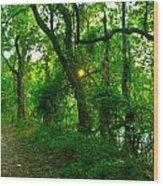 Enchanted Green Path Wood Print