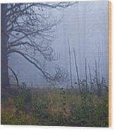 Enchanted Mist - Casper Mountain - Casper Wyoming Wood Print