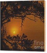 Enchanted Morning Wood Print