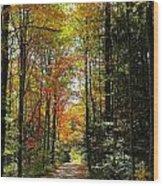 Enchanted Path Wood Print