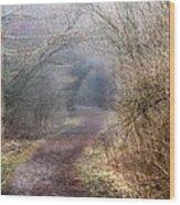 Enchanted Pathway Wood Print