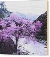 Enchanted Pink Wood Print