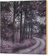 Enchanted Seney Path Wood Print
