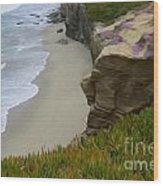 Enchanted Spaces California La Jolla Wood Print