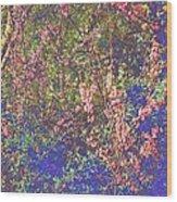 Enchanted Wood II Wood Print
