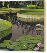 Enchanting Water Garden Wood Print