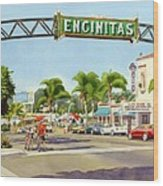 Encinitas California Wood Print by Mary Helmreich