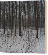 Enclave Wood Print