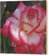 End Of June Bloom Wood Print
