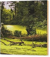 End Of Path Merged Image Wood Print