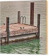 End Of Small Pier Wood Print