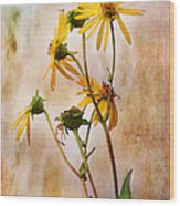 End Of Summer Bouquet Wood Print