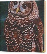 Endangered - Spotted Owl Wood Print