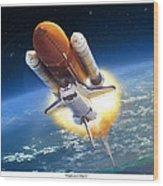 Endeavour Flight Wood Print