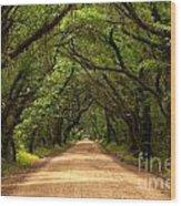 Endless Oaks Wood Print