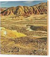 Endless Painted Hills Wood Print