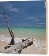 Endless Paradise Wood Print by Pete Reynolds