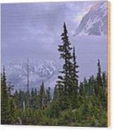 Enduring Winter Wood Print by Chad Dutson