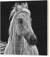 Energetic White Horse Wood Print