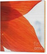 Enfolding In Orange Wood Print