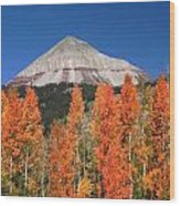 2d10688-engineer Mountain In Fall  Wood Print