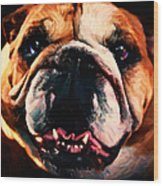 English Bulldog - Painterly Wood Print