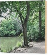 English Country Walk  Wood Print