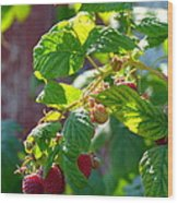 English Raspberries Wood Print