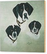 English Setter Momma And Pups Wood Print