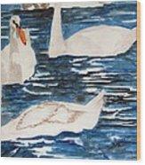 English Swan In The Queen's Garden Wood Print