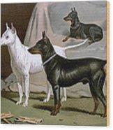 English Terriers Wood Print