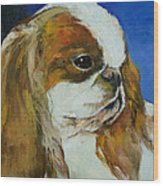 English Toy Spaniel Wood Print by Michael Creese