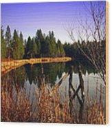 Enjoying The View At Grace Lake Wood Print