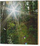 Enlightenment From The Angels  Wood Print