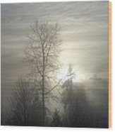 Fog Of Enlightenment Wood Print