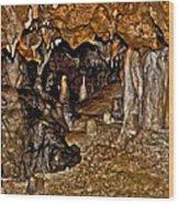 Entrance. Florida Caverns. Wood Print