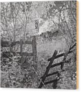 Entrance To An Old House Wood Print