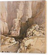 Entrance To Petra Wood Print
