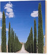 Entrance To Villa Tuscany - Italy Wood Print