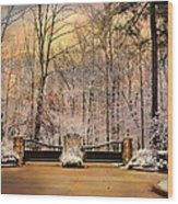 Entrance To Winter Wood Print