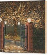 Entry Wood Print