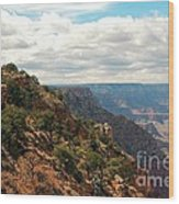 Environment Of The Canyon Wood Print