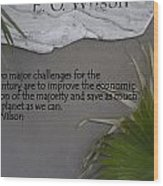 E.o. Wilson Quote Wood Print