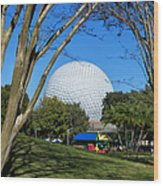 Epcot Globe Walt Disney World Wood Print