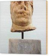 Ephesus Sculptue Wood Print