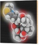 Epothilone B Drug Molecule Wood Print