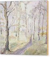 Epping Forrest Wood Print by David  Hawkins