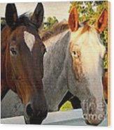 Equestrian Beauties Wood Print